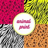 动物印刷品 免版税库存图片
