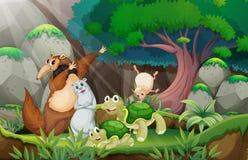 动物和密林 库存照片
