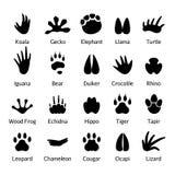 动物和爬行动物脚印传染媒介 皇族释放例证