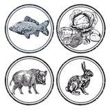 动物和鱼邮票 图库摄影