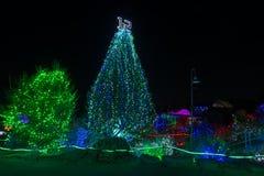 动物园光 塔科马, WA,美国- 12月,! 4 2014年 免版税库存图片