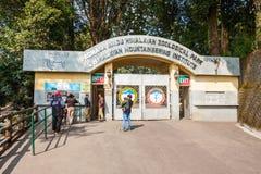 动物园在大吉岭 免版税图库摄影