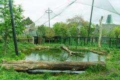 动物园封入物 免版税库存照片