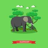 动物园概念横幅 野生生物大象动物 在平的样式设计的传染媒介例证 向量例证