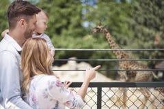 动物园 库存照片