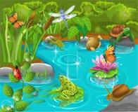 动物在池塘 向量例证