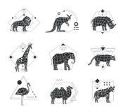 动物多角形单色象征 库存照片
