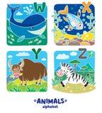 动物字母表或ABC 库存照片