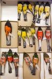动物学汇集、被保存的鸟研究的和教育 免版税库存照片