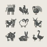 动物家庭图标集 免版税库存图片