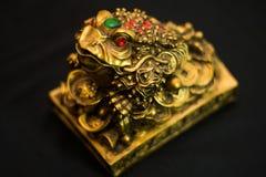 动物小雕象金钱古铜的亚洲,联合国一只蟾蜍,未聚焦 库存照片