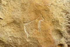 动物岩石的碑文 库存图片