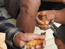 动物市场在巴厘岛印度尼西亚 图库摄影