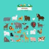 动物平的设计传染媒介象 库存例证
