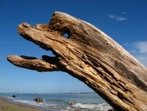 动物形象的木头 库存照片