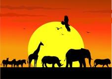 动物徒步旅行队slhouette 免版税库存图片