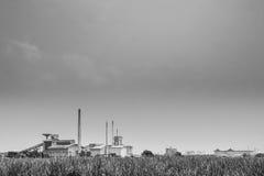 动物性食品工厂。 免版税图库摄影