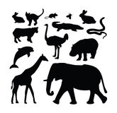 动物收集剪影动物园 库存照片