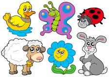 动物收集春天 库存图片