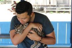 动物更加温驯的藏品一只华美的豹猫 库存照片