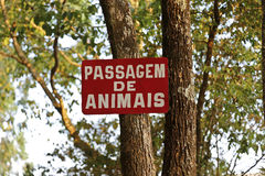 动物标志段落  免版税库存照片