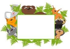 动物森林框架 图库摄影