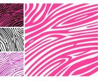 动物模式粉红色打印皮肤斑马 免版税库存图片