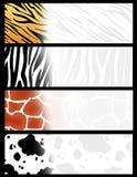 动物横幅标头 免版税库存图片