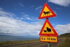 动物横渡 免版税库存图片