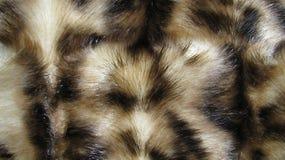 动物毛皮纹理 库存图片