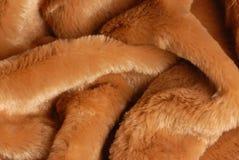 动物毛皮 免版税库存图片