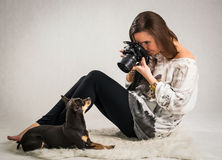 动物照相讲席会在演播室 库存图片