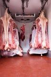 动物的尸体货车使用费 免版税库存图片