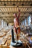 动物的骨骼在古生物学和比较解剖学画廊的在巴黎 库存照片