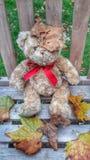 动物秋天熊滑稽的软的玩具 库存照片