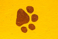 绘画动物脚印 免版税库存照片
