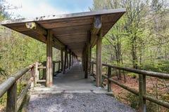 动物观看的观看的木人行桥,巴伐利亚,德国 有一个屋顶的木桥在森林里 免版税库存图片