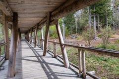 动物观看的观看的木人行桥,巴伐利亚,德国 有一个屋顶的木桥在森林里 库存照片