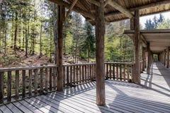 动物观看的观看的木人行桥,巴伐利亚,德国 有一个屋顶的木桥在森林里 库存图片