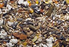 动物谷类食物 免版税库存图片