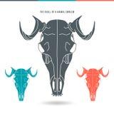 动物象征的头骨 免版税图库摄影