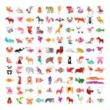 动物象集合 库存图片