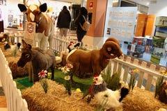 动物,有填充动物玩偶的动物园在游览中在意大利 库存照片