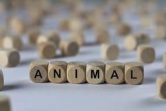 动物-与信件的立方体,与木立方体的标志 免版税库存照片