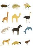 动物组装6 免版税图库摄影