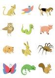 动物组装5 免版税库存照片