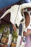 动物头骨印度 免版税库存图片