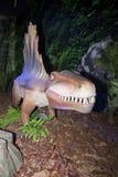 动物dimetrodon二叠纪 免版税库存照片