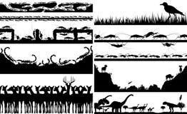 动物foregrounds 免版税库存照片