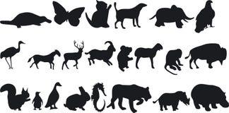 动物silouettes 库存照片